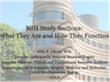 screencapture of a powerpoint presentation on NIH study sections and how they function